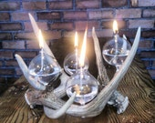 Modern Rustic Antler Oil Lamp table crown centerpiece