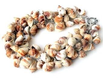 seashell bracelet. wire wrapped Nutmeg seashells.mermaid clasp. nautical bracelet tan beachy nautical eco jewelry uniquenecks bracelet