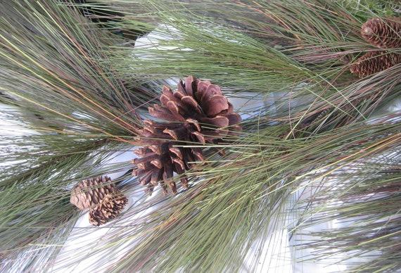 Beautiful Long Needle Pine Garland Christmas By