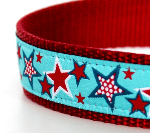 Red Stars on Aqua Blue Dog Collar  / 1 inch width / adjustable / Up to size Large only