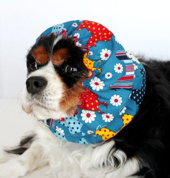 Chickens and Daisies Dog Snood  / Cavalier King Charles or Cocker fabric ear covering / Small Available
