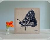 70s vintage Marushka Butterfly framed silkscreen print...navy blue on natural linen