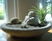 Lucky Pug Buddha Sculpture in Zen Garden Air Plant Stone Bowl Terrarium