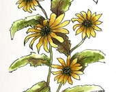"Daisy flower watercolor original still life 6 1/2"" x 7 1/2"" yellow black eyed susan still life"