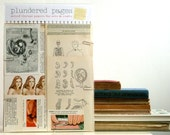 "The Female Body and Reproduction. Anatomy & Medicine - VINTAGE PAPER PACK - ""Plundered Pages"""