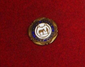 "Vintage Cobalt & White Enamel  on Brass ""United States Pony Clubs"" Membership Pin Badge"