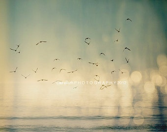 "Bird Photography, Abstract Photo, Vintage Inspired, Home Decor, Fine Art Photography - ""Where The Sky Meets The Sea"""
