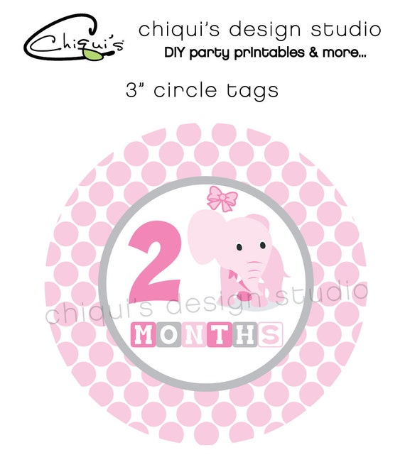 Baby Girl Monthly 3 inch tags - Chiqui's Design Studio -INSTANT DOWNLOAD