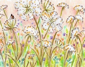 Original Drawing - Queen Anne's Lace - Colored Pencil Ink Drawing 3.5 x 5 - White Flower Art - Pale Pink Peach Sky