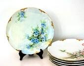 Vintage Plate Limoges H&Co France Floral Blue Green