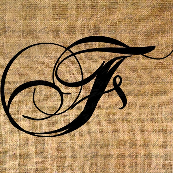The Gallery For Fancy Calligraphy Letter D