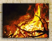 Fire photography, Bonfire in the South, the Claw, 16x24 ThinWrap, ready to hang
