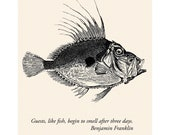 Fish Fridge Magnet - House Guest Ben Franklin Quote - Hostess Thank You Gift