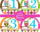 Baby Monthly Stickers FREE Baby Month Milestone Sticker Baby Girl Bodysuit Stickers Baby Month Stickers Newborn Props Green Brown Pink Owls