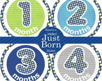 Baby Month Milestone Stickers FREE Baby Month Sticker, Monthly Baby Stickers,  Baby Boy Bodysuit Stickers, Dots Chevron Blue Green Grey