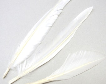 10-20cm Natural Feather White Lot of 300pieces - 4713  - Wholesale Feathers Bulk Accessory