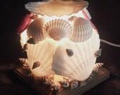 SeaShell Electric Tart Warmer & Night Light 3