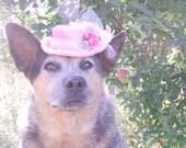 Pet Hat- Pink Victorian