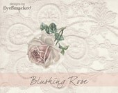 Banner premade French Blush Rose delicate lace 9 piece store front