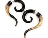 Fake Gauge Earrings - 1 Pair OOAK Organic Wood Double Curl 2-Tone Fishooks - Wooden Earrings - (By Fake Gauge Organics)