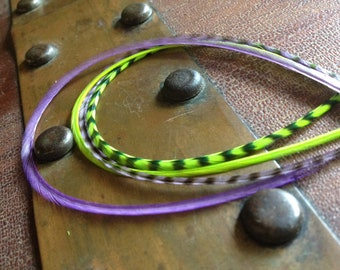 Bonded Feather Extension 4 Real Hair Accessory Feathers Neon Lime Green, Purple Grizzly Feather Hair Extensions