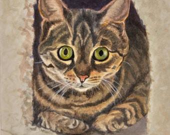 Tabby Cat Art, Tabby Cat Print, Cat Wall Art, Cat Watercolor Painting by P. Tarlow
