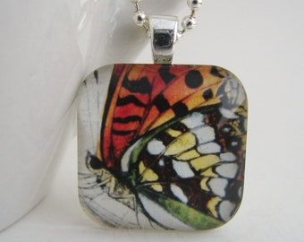 Big Butterflly Pendant with Free Necklace