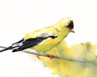 Bird PAINTING Goldfinch watercolor Print of Watercolor Painting G079- A4 print