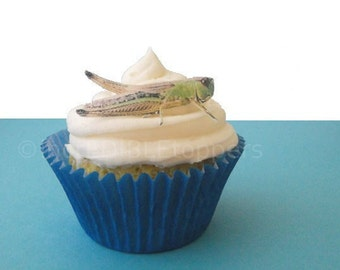 Edible Cupcake Decorations, 12 Grasshoppers,  For Boys Birthday Party, Kids Cakes, Bug Birthday