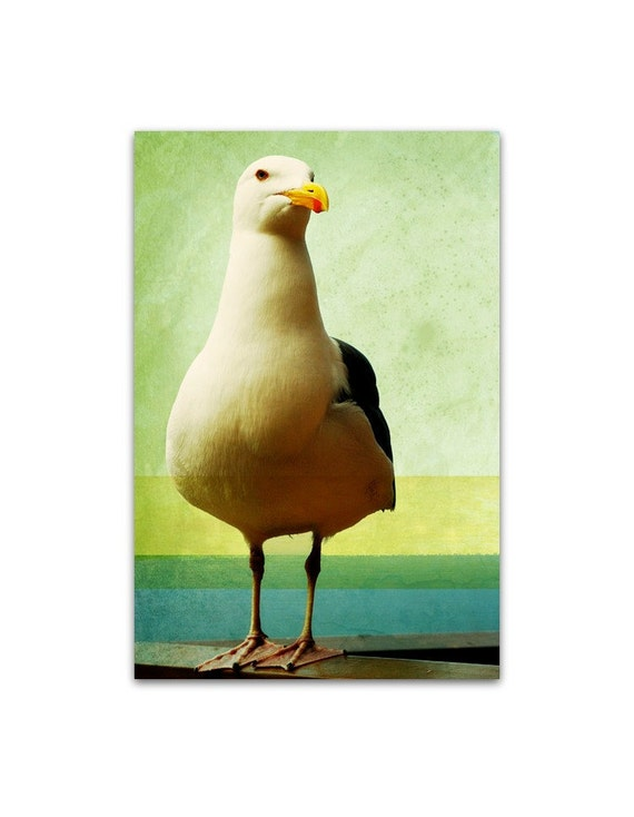 photography, nautical photography, beach, vintage beach, seagull,summer, beach art, beach house, retro - Gull, 8x12 fine art photograph