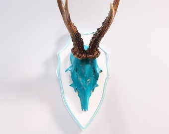 "Stylish wall sculpture, deer antler with scull, deer scull, deer mount, wall decoration, antler hook, antlers,  ""Dorothea"""