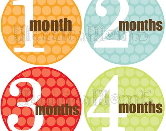 Monthly Baby Boy Stickers Baby Month Stickers, Monthly Bodysuit Sticker, Monthly Stickers (Neutral Solid)