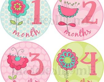 Monthly Baby Girl Stickers, Milestone Stickers, Baby Month Stickers, Monthly Bodysuit Sticker, Monthly Stickers (Fiona)