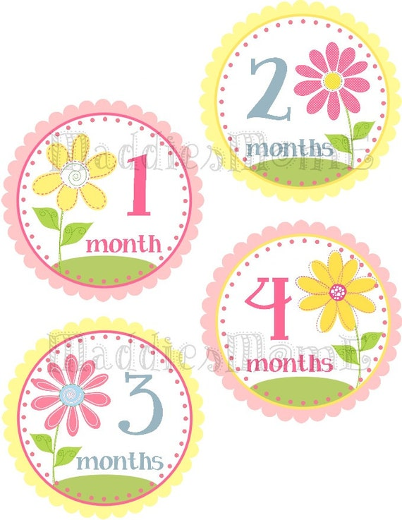 Monthly Baby Girl Stickers, Milestone Stickers, Baby Month Stickers, Monthly Bodysuit Sticker, Monthly Stickers Flowers (Kylie)