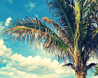 Palm Tree Tropical Leaf Print | Palm Tree Beach Photography | Blue Sky + Cloud Photography | Palm Tree Home Decor | Greenery Art Print