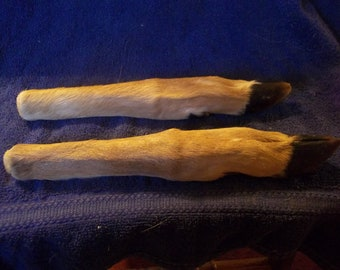 2 Real animal Deer Legs bone parts taxidermy hoof knife handle