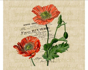 Orange poppies French instant digital download image Vintage Paris decor for fabric transfer decoupage paper burlap pillows No. 497