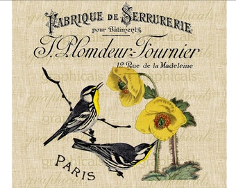 Black yellow birds French ephemera instant graphic digital download image transfer for iron on burlap decoupage paper pillow tote No. 592