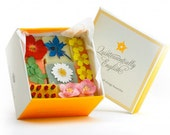Summer Bloom Organic Soap Giftbox - Small