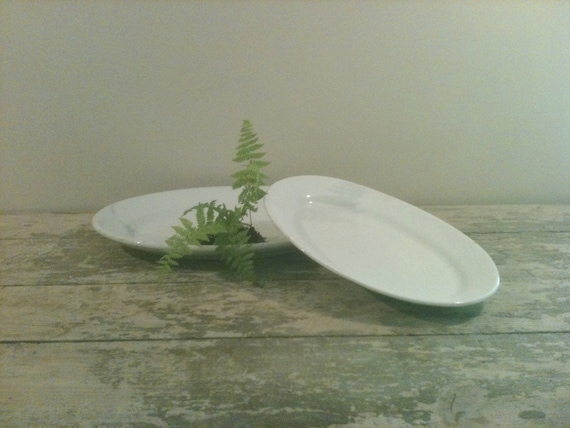 Pair of Ironstone Platters