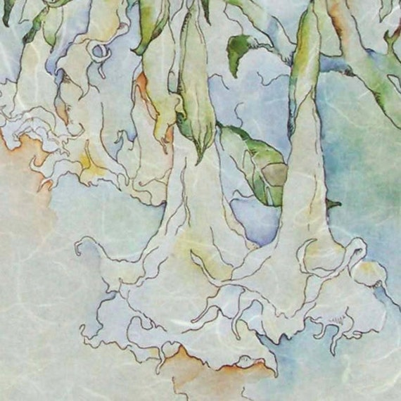 Angel Trumpet watercolor on Rice Paper