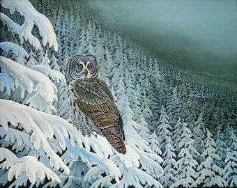 Bird Print, Painting, Great Grey Owl, Watercolor, Wildlife, Nature, Fine Art, Winter Scene, 11 x 14 Signed/Numbered, Wall Decor, Wall Art