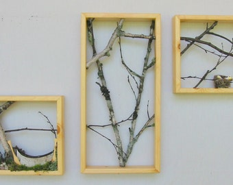 Birch Branch Triptych, canoe, birds, reduced price. woodland.