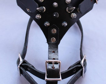 Small Black Leather Harness with Spiked