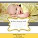 Custom Baby Dedication (PDF)