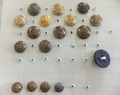 Military Button Collection