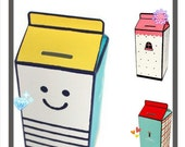 Coin box DIY (Set of 3 styles with instruction and material provided)