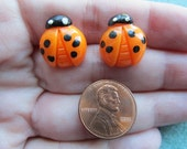 Cute Hand Painted 16mm x 14mm Tangerine Orange Resin Ladybug Post Earrings with Black Polka Dots and White Eyes