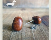 Cocoa Bean. Post Earrings -- (Brown, Wood, Small, Simple, Cute, Vintage Style, Natural, Autumn, Fall, Lightweight, Gift For Her Under 10)