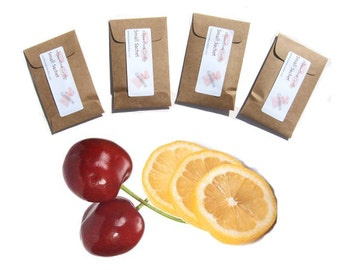 Scented Sachets Cherry Lemonade Party Seed Packet Favors Mini Envelopes Kraft Pick Color Country Wedding Spring Summer Present Teen Decor